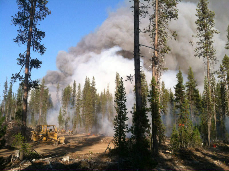 Become a Wildland Firefighter | Miller Timber Services